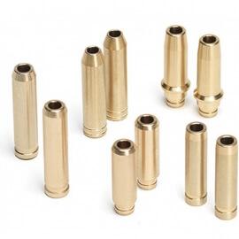 Bronze guide valves